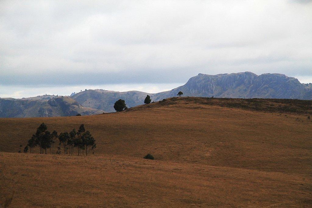Madagascar-16.jpg